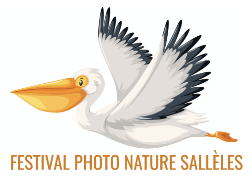 Festival photo nature de Sallèles d'Aude - Festival photo - Festival photo nature et animalière - Festival photo sud de la France - Festival photo Aude - Festival photo région Occitanie - Festival photo Narbonne - Festival photo Languedoc-Roussillon - Festival photo nature Méditerranée